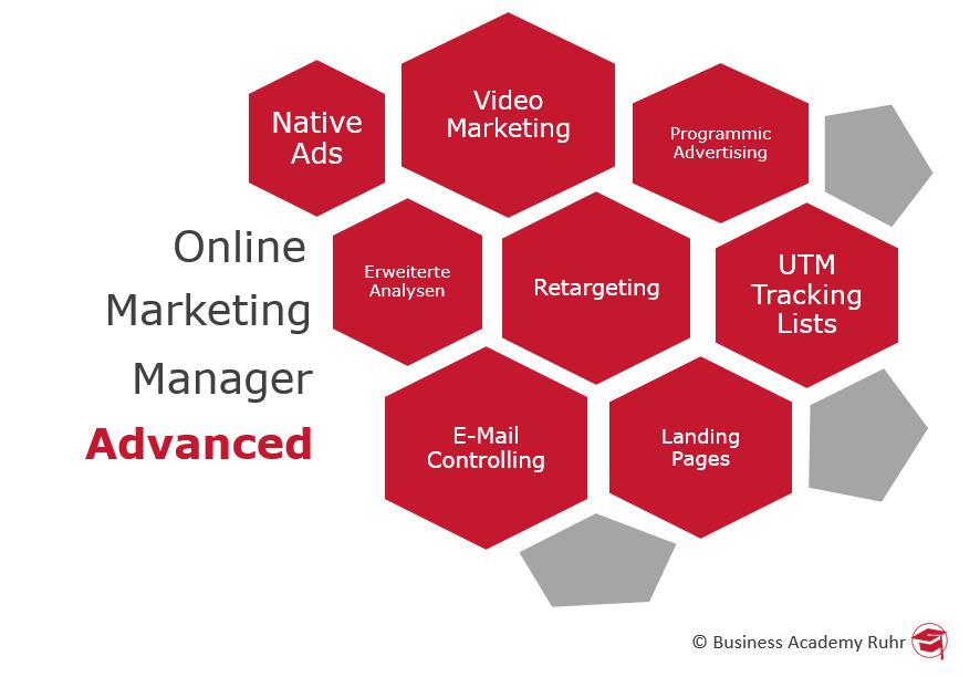 Inhalte Online Marketing Manager Advanced